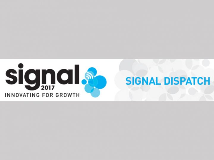 P&G Signal Dispatch Newsletter
